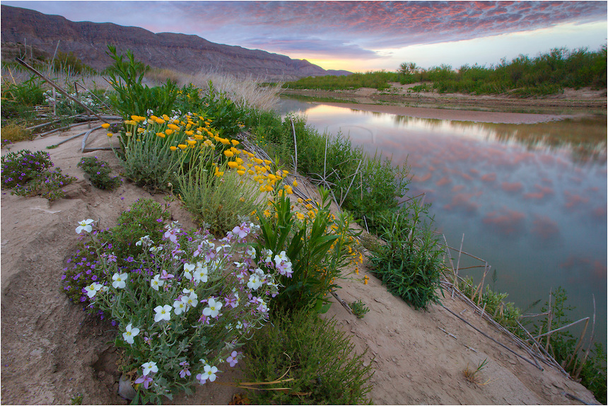 Along the banks of the Rio Grande wildflower bloom each spring. The river has, since 1845, marked the boundary between Mexico and the United States from the twin cities of El Paso, Texas, and Ciudad Juárez, Chihuahua, to the Gulf of Mexico. As such, it was across this river that Texan slaves fled when seeking their freedom, aided by Mexico's liberal colonization policies and abolitionist stance.