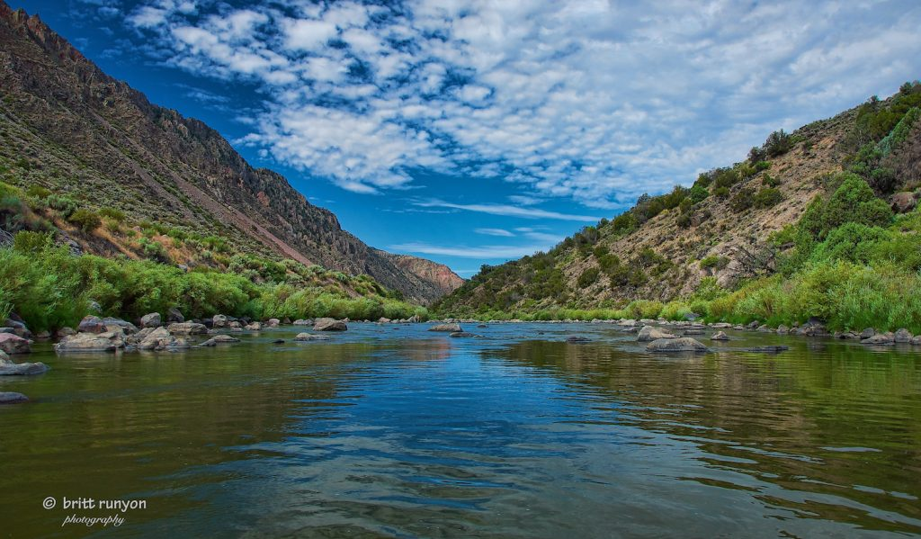 The Rio Grande was listed among the nation's Most Endangered Rivers in 1993, 1994, 1995, 1996, 2000, and 2003 due to the construction of dams and pollution.